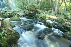 Gollinger Wasserfall #golling #tennengau #salzburgerland Austria, Waterfall, River, Outdoor, Round Round, Outdoors, Waterfalls, Outdoor Games, The Great Outdoors