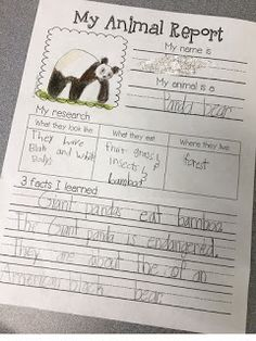 second grade animal research paper