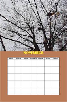 November Season Calendar, Monday Tuesday Wednesday, Paint Shop, November, Seasons, Seasons Of The Year