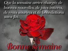 Que la semaine arrive chargee de bonnes nouvelles, de joies intières, de vrais sourires et de benedictions sans fin. Bonne semaine #bonnesoiree rose fleur