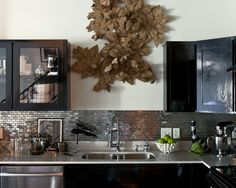 Spaces Stainless Steel Backsplash Ebony Cabinets Design, Pictures, Remodel, Decor and Ideas - page 2