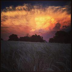 Thunderhead and Kansas wheat.