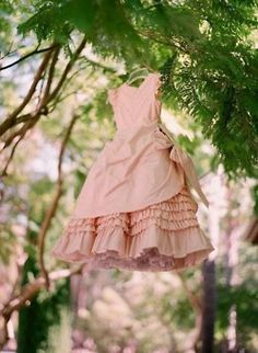 Photograph your wedding dress in the woods