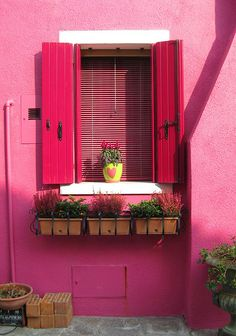 Burano - Best of Wallpapers for Andriod and ios Flower Background Wallpaper, Pastel Wallpaper, Flower Backgrounds, Old Doors, Windows And Doors, Pink Houses, Painted Doors, Screen Wallpaper, Exterior Paint