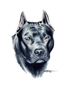 Pit Bull Dogs Pit Bull Terrier Art Print by Watercolor Artist DJ Rogers - Tatouage Pit Bull, Pitbull Drawing, Bull Tattoos, Pit Bull Tattoo, Tatoos, Oldschool, Bull Terrier Dog, Pit Bulls, Dog Art