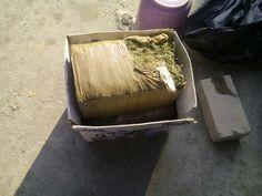 ] ACAPULCO, Gro. * 27 de abril de 2017. Elementos de la Policía Municipal que participan en las acciones conjuntas de los tres niveles de gobierno, como parte del operativo Fuerza de Reacción Inmediata Mixta (FRIM), aseguraron más de 42 kilogramos de hierba verde con las características de la...