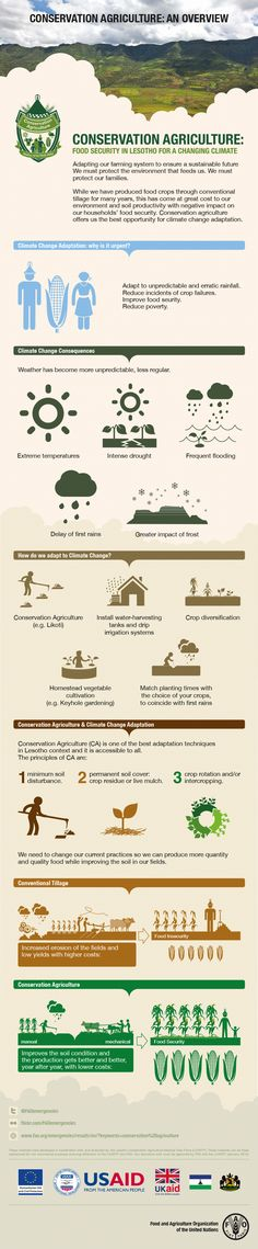 Conservation agriculture: an overview