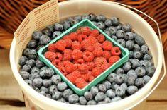 Grieg Farm. Best blueberries ever.