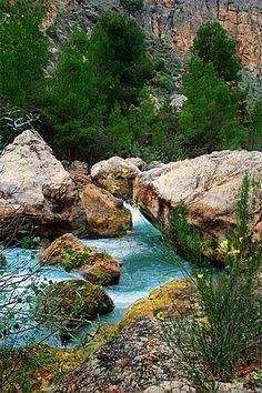 Río Segura  Múrcia  Spain