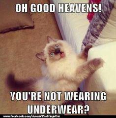 Oh good heavens! You're not wearing underwear?