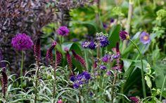 The Husqvarna Garden by Charlie Albone