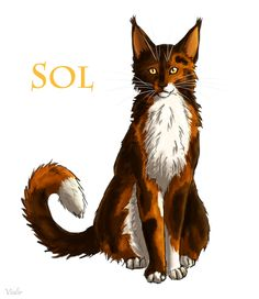 WCFF: Sol was lying when he told Leafstar about his past.