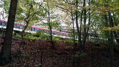Vom U-Bahnhof Ohlstedt geht der Hochbahnwanderweg zum U-Bahnhof Volksdorf. Die Strecke geht vollständig an der Strecke der U1 entlang. Der Waldweg eignet sich gut, um einfach mal einen netten Nachmittagsspaziergang zu machen.
