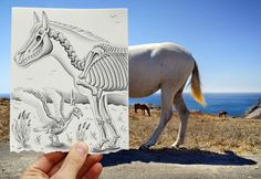 Top 10 Pencil vs Camera Illustrations & Sketches Pictures | Top 10 Pictures