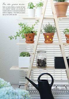Plantas na estante,feita de escada.