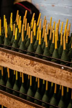 Cones in the spinning department.