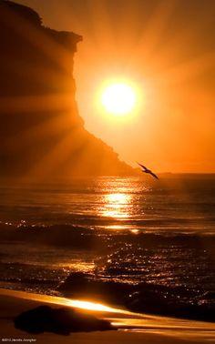 `Beautiful sunset!