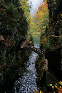 Puente <3