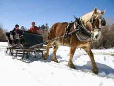 • $24 ($48reg) horse-drawn sleigh ride for two!  or • $48 ($96reg) horse-drawn sleigh ride for four #holiday #family #snowday #YOLO