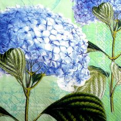 4 x Single Table Paper Napkins / Craft / Party / for  Decoupage /  HYDRANGEA