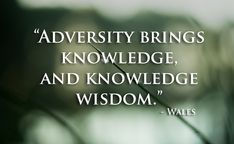 Adversity brings knowledge, and knowledge wisdom. Welsh proverb