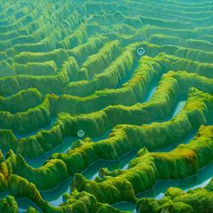 I can see the moon — theartofmichaelwhelan: GREEN PASSAGE (2010) by...