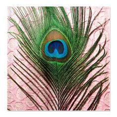 Light Pink Peacock Feather Shower Curtain