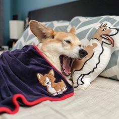 """6,810 Likes, 55 Comments - WALLY (@wallythewelshcorgi) on Instagram: """"When you can sleep all day and still be tired when you wake up."""""""