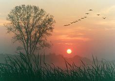Autumn Dawn by James jordan