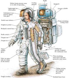 Nasa Apollo Moon Suit /by Stephen Biesty Space Shuttle, Interstellar, Einstein, Astronaut Suit, Astronaut Drawing, Apollo Space Program, Space Facts, Aerospace Engineering, Space And Astronomy