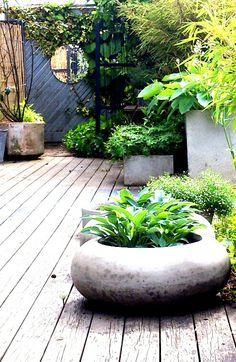 My garden in Sweden 153