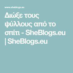 Διώξε τους ψύλλους από το σπίτι - SheBlogs.eu   SheBlogs.eu