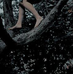 children of III [woods] Twilight, Timberwolf, Dragon Age, Neverland, Werewolf, Fairy Tales, The Originals, Photography, Inspiration