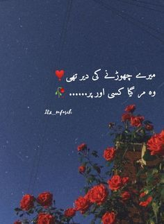 Shyari Quotes, Poetry Quotes In Urdu, Best Urdu Poetry Images, Writing Quotes, Quotations, Life Quotes, Qoutes, Quotes Deep Feelings, Attitude Quotes