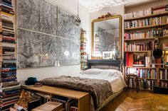 Library collection in Paris apartment