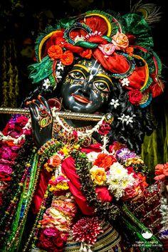 Hare krishna Radha Krishna Holi, Shree Krishna, Krishna Art, Radhe Krishna, Lord Krishna, Shiva, Krishna Photos, Krishna Images, Iskcon Krishna