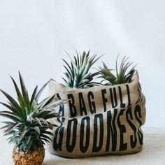 A Bag Full of Goodness