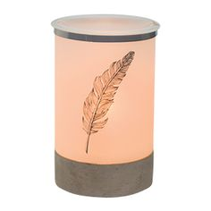 A lone feather illustrated in lovely detail drifts across a frosted shade resembling parchment, while an Edison bulb offers warm, hushed light — a handwritten letter quilled by candlelight.