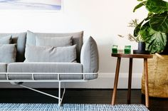Wire frame sofa with wood side table and plant.
