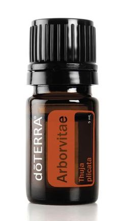 Arborvitae Essential Oil~Uses: Apply 1–2 drops to areas of concern on the skin. Add a few drops to a spray bottle with water and spray on surfaces or hands to protect against environmental threats. Apply to pulse points to promote healthy cell function. Diffuse to purify the air and to repel insects inside the home. Mix 4 drops of Arborvitae essential oil and 2 drops of Lemon essential oil for a natural wood preservative and polish.