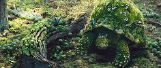 #Fairyland