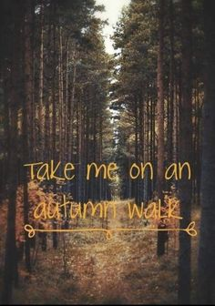 30 ideas nature autumn hello october for 2019 Autumn Cozy, Fall Winter, Autumn Quotes Cozy, Dark Autumn, Winter Season, October Country, Autumn Walks, Autumn Scenes, Autumn Aesthetic