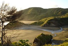 Read about the Waitakere Ranges Heritage Area, including local area plans, protection of the area and its heritage features, reporting and development. Auckland, Ranges, Nature Photos, New Zealand, Beaches, Parks, Nature Photography, Heaven, Water
