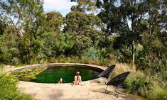 Ditch the chemicals, and go au naturel, with a plant cleaning pools
