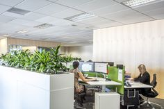 Desk Space PKF SMART Business Hub - NZ
