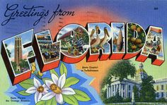 Greetings from Florida 1940 postcard!