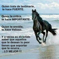 Inspirational Phrases, Motivational Phrases, Meaningful Quotes, Good Morning Beautiful Quotes, Beautiful Nature Wallpaper, Horse Photos, Spanish Quotes, Life Motivation, Beautiful Horses
