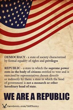 We are a Republic! Learn about America. America is a CONSTITUTIONAL Republic. Not a democracy. We strive for democracy. American Pride, American History, American Flag, American Quotes, American Symbols, American Spirit, Independance Day, Out Of Touch, Us History