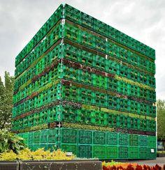 В рамках фестиваля искусств Art And About, прошедшего в Сиднее, был создан гигантский бобовый огород под названием Конструкция под названием «Великая клеть».