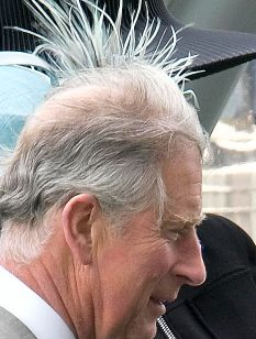 Do you think you have too little hair on your head to comb? Are you looking for an epic comb over or some short comb over hair? Check out some comb over styles, comb over hairstyle or a comb over haircut which you may prefer choosing. Comb Over Styles, Short Comb Over, Comb Over Haircut, Prince Charles And Camilla, Long Black Hair, Wedding Hairstyles, Funky Hairstyles, Formal Hairstyles, Bad Hair Day